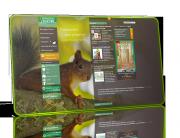 site-internet-bourgogne-nature