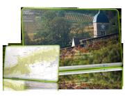 site-internet-et-cartographie-les-climats-du-vignoble-de-bourgogne